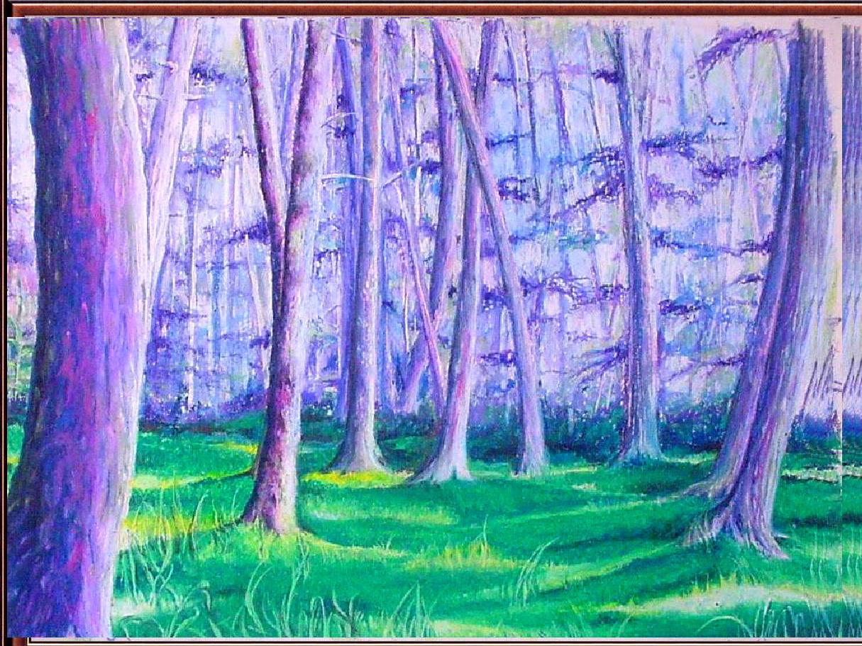 Purple Trees – Oil pastel on paper, 2009 | Karen Marcos Art